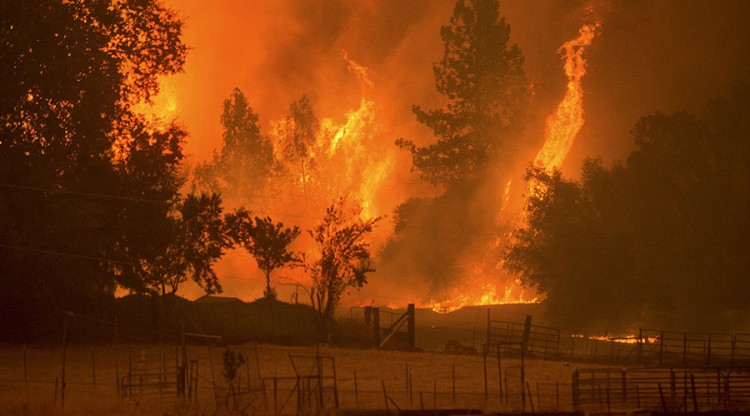 Flames from the Butte fire rise over a pasture in Mountain Ranch, California September 11, 2015. Evacuation orders were expanded to thousands of homes in northern California's Sierras on Friday as the rapidly spreading wildfire roared for a third day through drought-parched timber and brush, threatening mountain communities.  REUTERS/Noah Berger      TPX IMAGES OF THE DAY      - RTSQBE