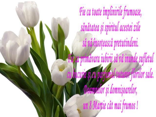 Nastere Ziua De Flori De